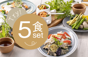 STYLE DELI®ENTRYお試し5食セット